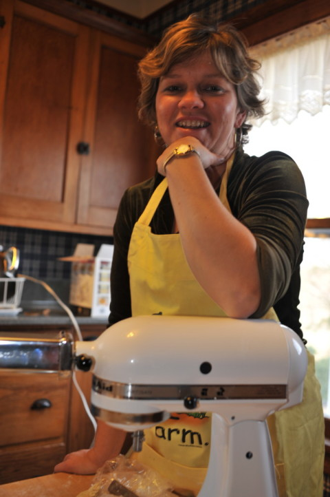 HOMEMADE FOR SALE author, Lisa Kivirist, with her mixer.