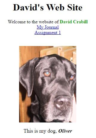 David's First Website